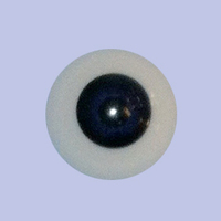Baby Eyes P062 Eyeco Polymer, 18mm only