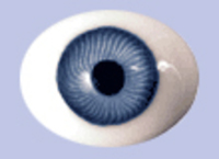 Blue Flat Backed Glass Antique Iris Eyes