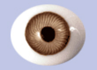 Brown Flat Backed Glass Antique Iris Eyes