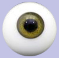 Brown Solid Glass Paperweight Eyes
