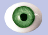 Green Flat Backed Glass Antique Iris Eyes